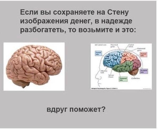 Мозг и деньги