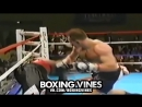 BOXERS PUNCHED THROUGH THE ROPES #1 (Boxing Vines) | vk.comboxingvines