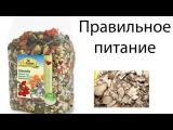 разрешенные корма, лакомства для шиншиллМир питомцев
