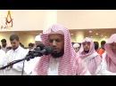 Emotional Quran Recitation | Heart Soothing | Salat Tarawih By Sheikh Abu Bakr Shatri || AWAZ