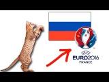 Кошка Ашера болеет за Россию!