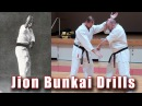 Practical Kata Bunkai: Jion Bunkai and Drills