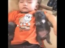Cutest Video of The Year - Cute Puppies Sleeping With Baby