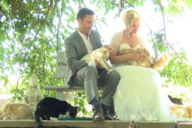 m00j0TLeOwE - 1100 Пушистых гостей на свадьбе