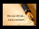 Джек Лондон Любовь к жизни мнения о смысле рассказа