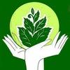 Зеленые школы Березовского городского округа