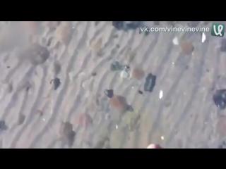Невероятно_прозрачный_лёд_на_озереVine_Video73