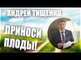 Приноси плоды! Пастор Андрей Тищенко Новое поколение