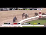 Smarty Jones Stakes G3  - 2017   Uncontested