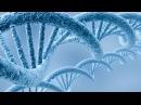 Активация ДНК 3-й Уровень ч. 1 Целительная музыка Крайона