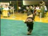 Xu XiangDong - Eagle Claw Boxing