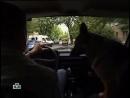 Возвращение Мухтара 5 сезон 42 серия-Банкрот