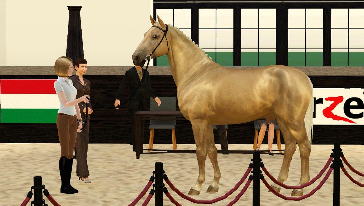 Регистрация лошадей в RHF 2 UMHJDS2y8Fg