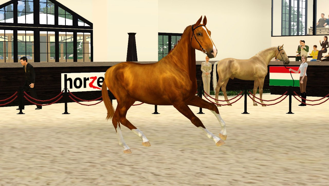 Регистрация лошадей в RHF 2 - Страница 3 5swllQ482Xs