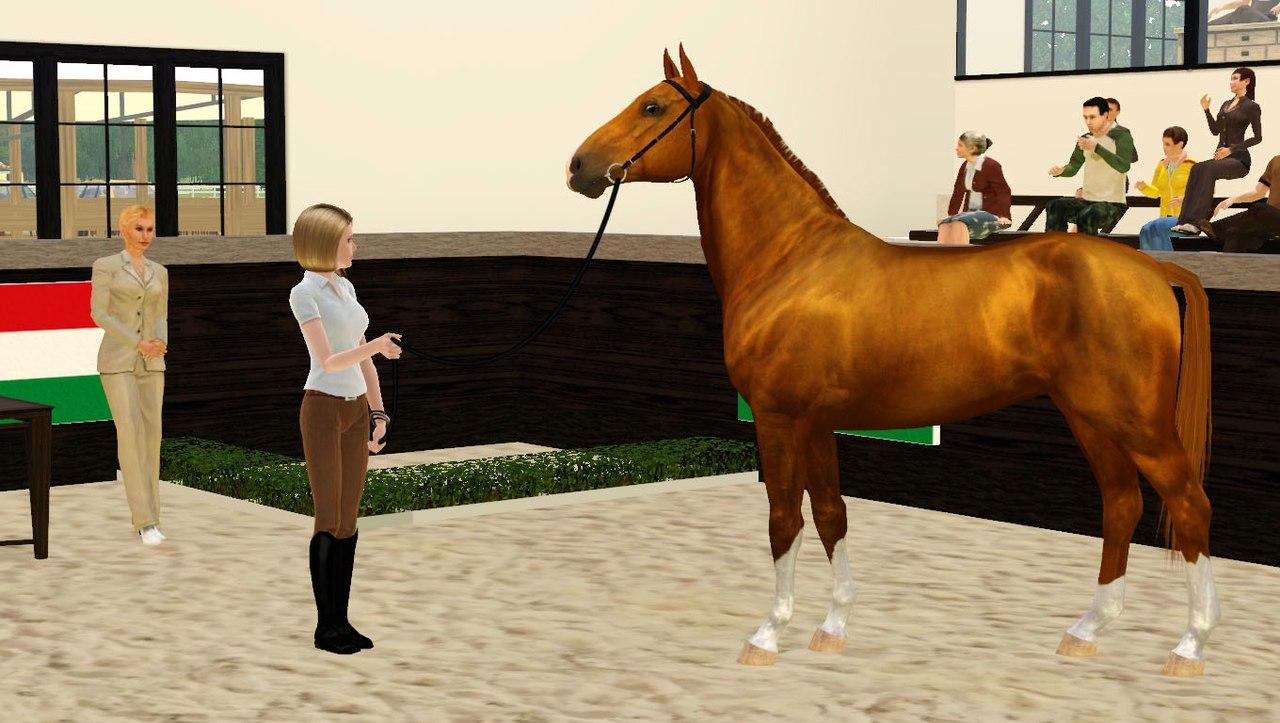 Регистрация лошадей в RHF 2 - Страница 3 FQnLJpb_6Bo