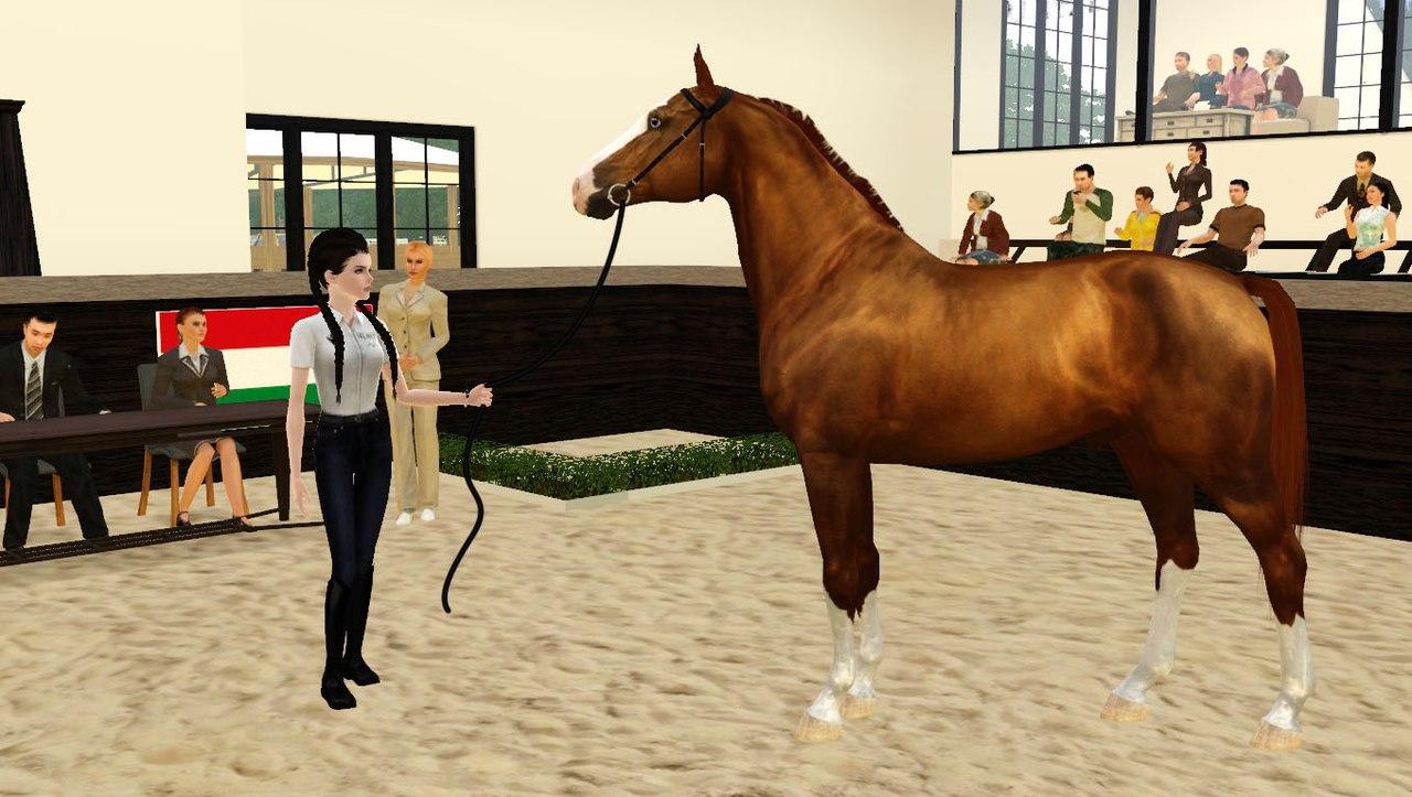 Регистрация лошадей в RHF 2 - Страница 3 VzDfXg8SIVw