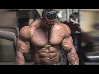 Bodybuilding Motivation - The Beast Unleashed (2017)