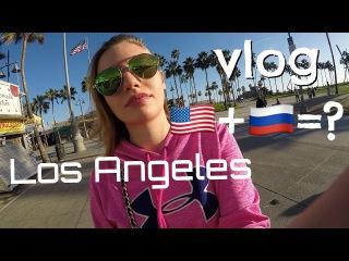 Мнение о русских, советы по бизнесу, Венис - vlog LA