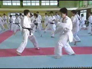 Техника Кумитэ - Seiji Nishimura - Wado-Ryu Kumite Technique Seminar - part6