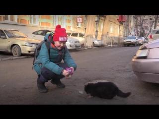 Рэпер-сладкоежка дал концерт в Ростове, чтобы накормить бездомных котов (#NR)