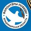 Волонтёры Победы. Владимирская область