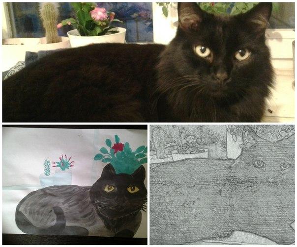 Этого котика я нашла 10 лет назад,тогда он был котенком.И вот уже столько лет он-мой верный друг