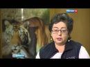Вести-Москва контактные зоопарки - 26.02.2016