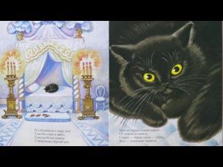 Белый дом и чёрный кот