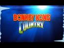 Donkey Kong Country Aquatic Ambiance Remix