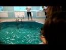 Настино первое соревнование по плаванию!
