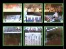VOID STEPS -LIVE MORE promo