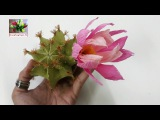 DYI   How to make paper flower   Cactus by crepe paper