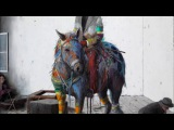 UNKLE - Looking for the Rain feat Mark Lanegan &amp Eska