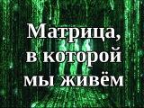 Матрица, в которой мы живём. Николай Литвинов