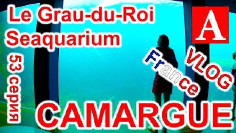 VLOG: Едем в Le Grau-du-Roi, катаемся по городу, идем в большой аквариум. 53 серия