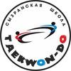 ЧЕМПИОН | Сызранская Школа Тхэквондо (ВТФ)