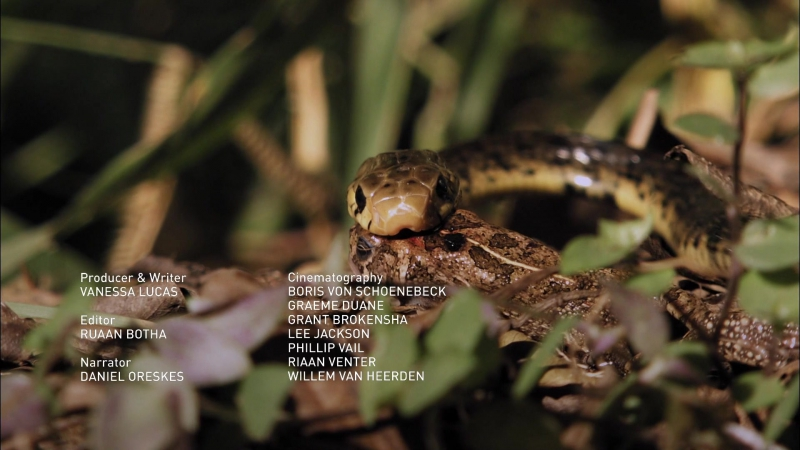 NG. Мафия кобры - Cobra Mafia (2014) HDTV 1080p