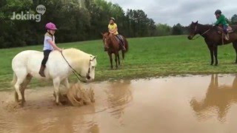 Pony Forgets Little Girl Is On His Back And Rolls Around In The Mud