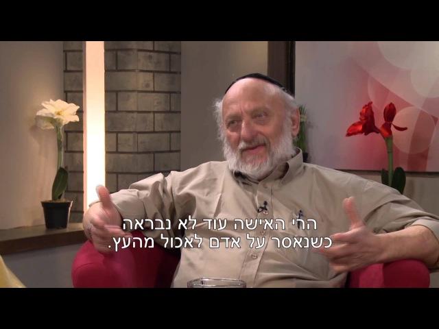 Беседы об Иудаизме - О Древе познания добра и зла с Зеевом Дашевским (2)