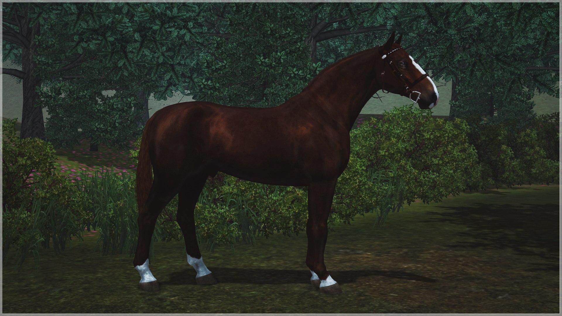 Регистрация лошадей в RHF 2 - Страница 5 9py8wLow6x0