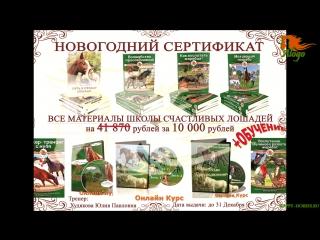 Новогодняя распродажа на все видео-тренинги и книги Школы Счастливых Лошадей