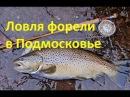 Рыбалка в Подмосковье.Рыбалка в Подмосковье с Алексеем Чернушенко.