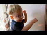 Благодаря зрителям Первого канала деньги налечение маленького Миши, который н ...