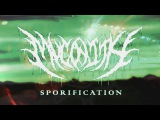 MYCONITH - SPORIFICATION [OFFICIAL MUSIC VIDEO] (2017) SW EXCLUSIVE