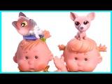 Прикольные питомцы собачка и кошка в ванной и в бассейне Игрушки Для девочек Игры Для детей Куклы