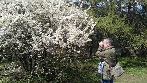 Разумеется, весна привлекает бездарных фотографов.
