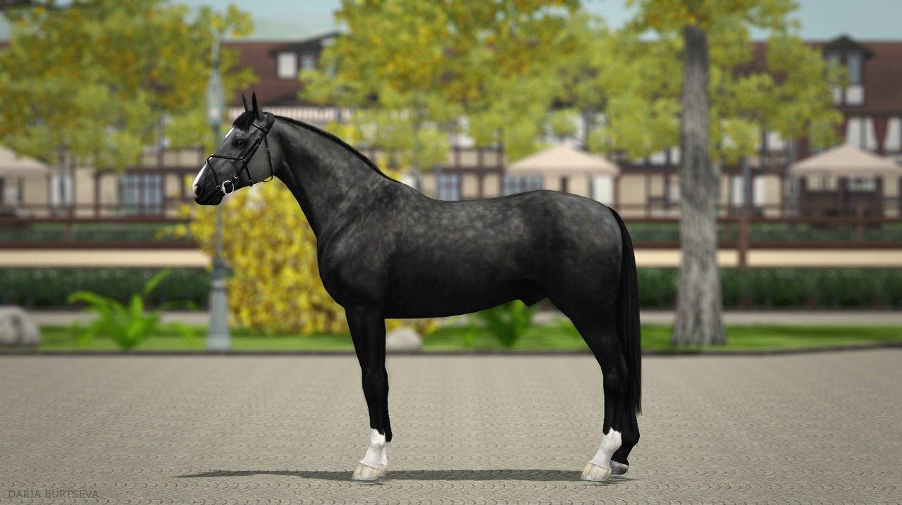 Регистрация лошадей в RHF 2 - Страница 5 02iGTIYDq38