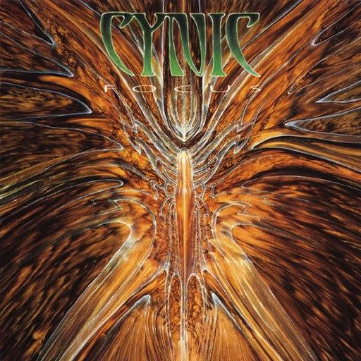 Cynic альбом Focus
