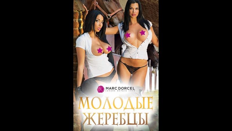 «Молодые жеребцы» (Les Etalons de Mademoiselle, 2013) смотреть онлайн в хорошем качестве HD