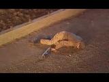 Платина 1 сезон 13 и 14 серия (2007) Криминал, приключение